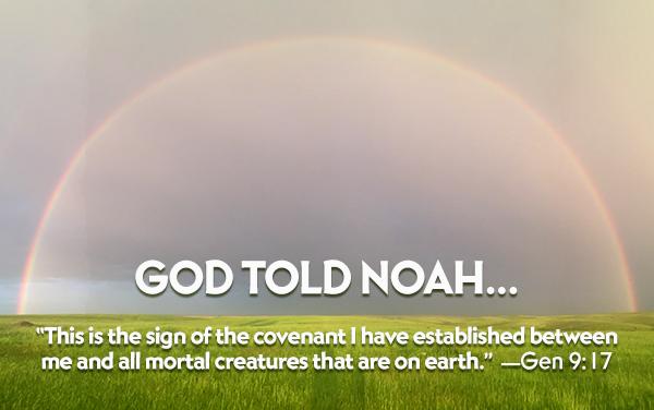 DOFH_noah_rainbow2